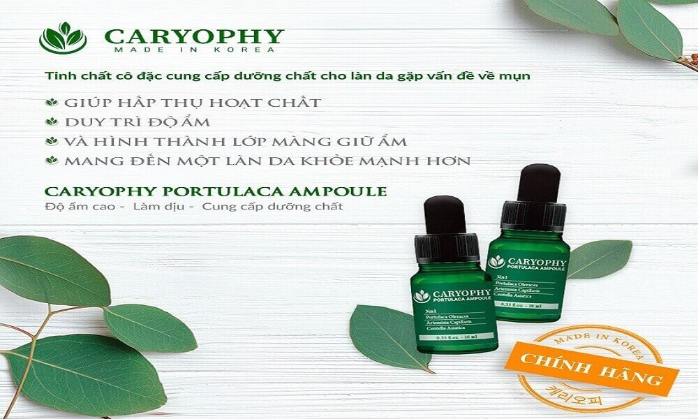 Công dụng của Caryophy portulaca ampoule