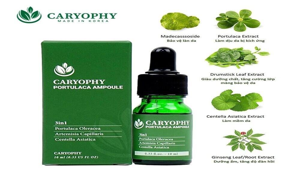 Thành phần chính của serum trị mụn Caryophy
