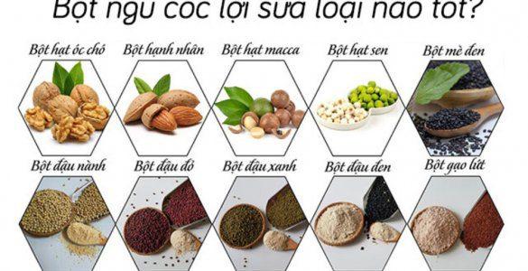 ngu-coc-loi-sua-tot-nhat