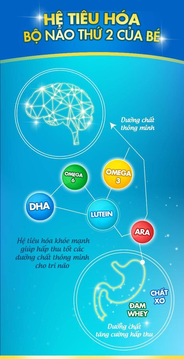 Sữa dành cho trẻ rối loạn tiêu hóa thành phần phải dễ hấp thu