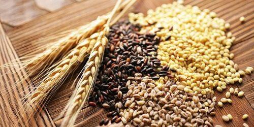 Ngũ cốc là hỗn hợp 5 loại hạt cơ bản cùng các hạt khác tùy vào khẩu vị người dùng