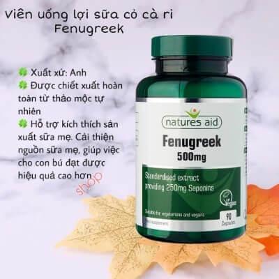 Lợi sữa c� cà ri của Anh Fenugreek Natures Aid